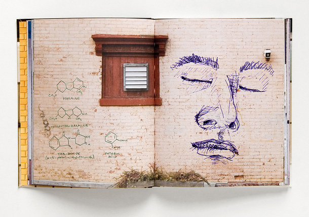 Walls Notebook by the.