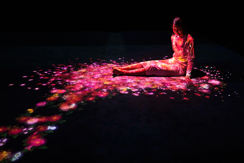 teamLab's 'Transcending Boundaries' Exhibition in London