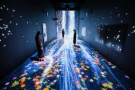 teamLab's 'Transcending Boundaries' Exhibition in London