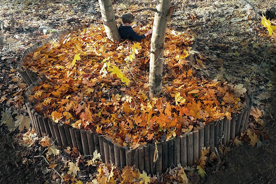Swedish Architects Created Series of Leaf Pools to Enjoy Autumn Leaves