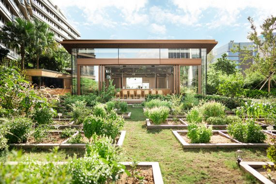 LAAB Architects Designed Rooftop Glasshouse and Urban Farm in Hong Kong